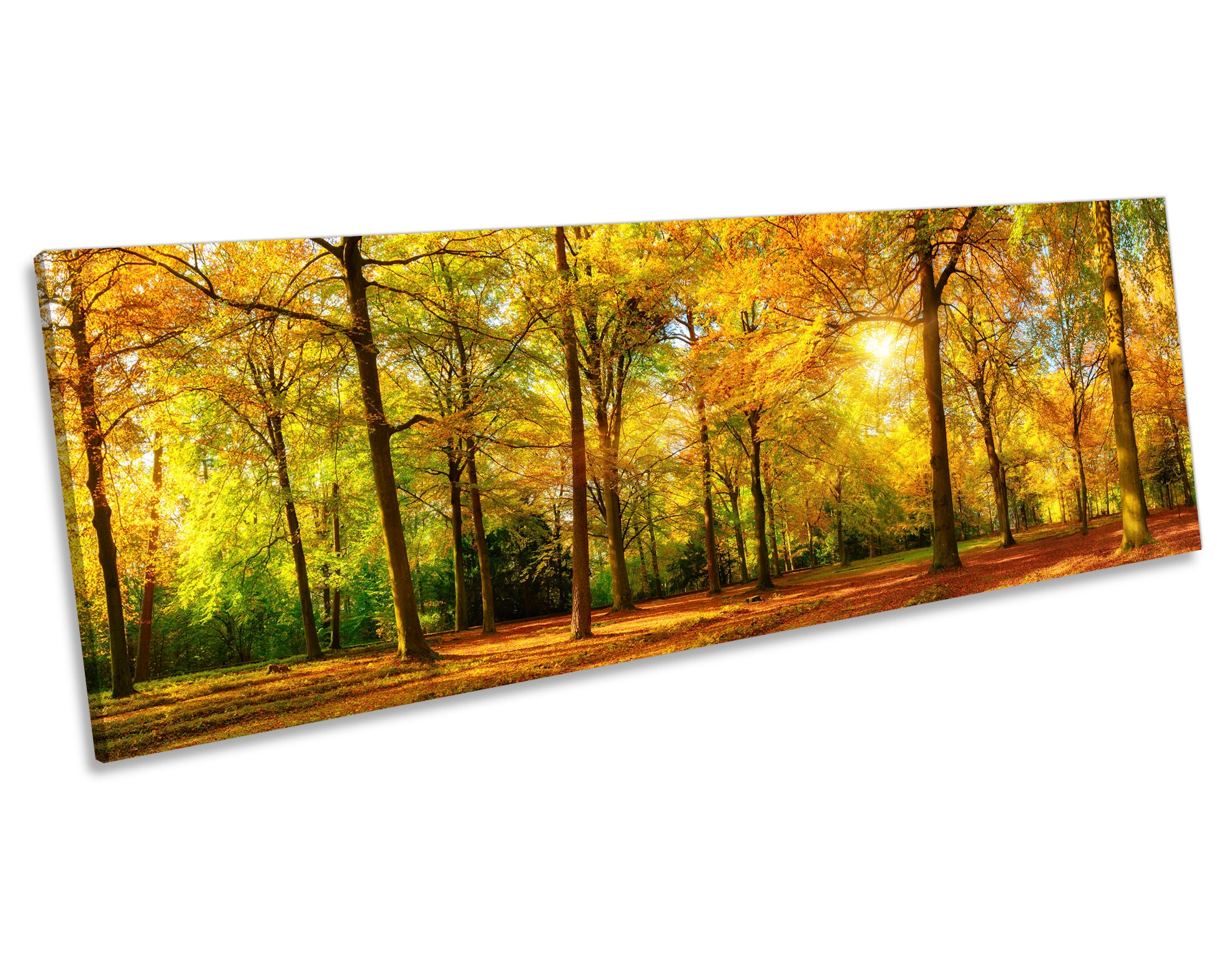 Charming Panoramic Canvas Wall Art Gallery - The Wall Art ...