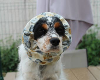 Snood chiens 2/2