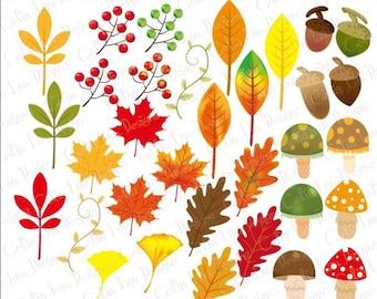 Autumn Leaves Digital Clipart. Fall Clipart. Leaf Clipart , Acorn Clipart, Autumn Elements Clip Art. Fall Clip Art, Mushroom Clipart (CG184)