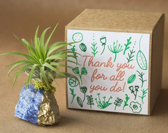 Thank You For All You Do, Blue Sodalite Thank You Gift, Crystal Air Plant Terrarium, Coworker Gift, Employee Appreciation Gift, Teacher Gift
