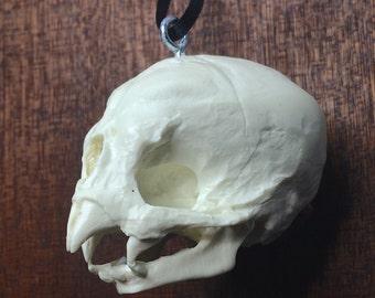 Nosferatu Fetal Skull Ornament