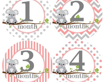 Baby Monthly Milestone Growth Stickers Light Pink Grey Koalas Baby Nursery Theme Baby Shower Gift MS968 Baby Photo Prop