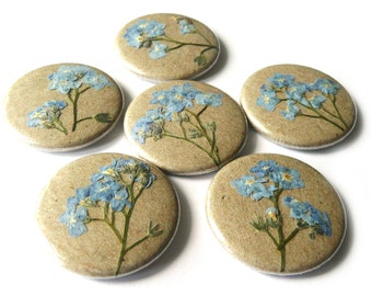 Forget-me-not, 0.98'' pinback button with dried flower