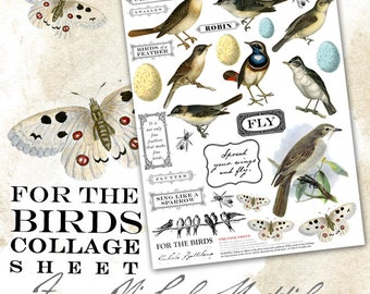 For the Birds - PDF collage sheet download