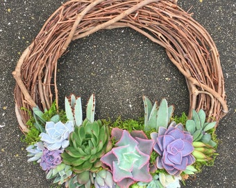 "14"" Living Succulent Wreath (made to order)"
