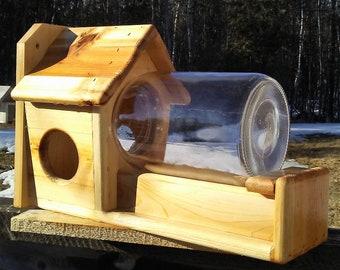 High quality gallon glass jar squirrel feeder, square cedar wood, TBNUP