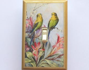 Bird nest & egg theme Switchplates w/ MATCHING SCREWS- Birdcage switchplate sunroom decor tropical birds Latin text metallic gold border art