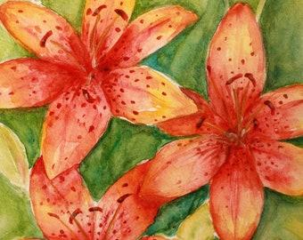Tiger Lillies - Original Watercolor