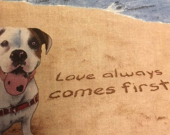 Love Always Comes First Snuggle Pillow- Handmade 7 inch x 7 inch square