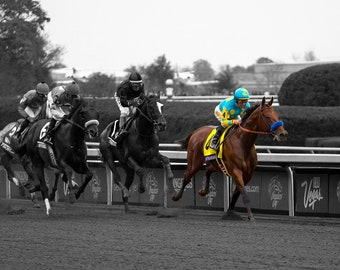 Fine Art Photo Print of American Pharoah, Breeders' Cup, Keeneland, Triple Crown, Kentucky Derby, Lexington, Kentucky Equestrian Horse Decor