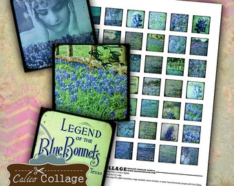 Texas Bluebonnets, Collage Sheets, 1x1 Inch Squares, Texas State Flower, Pendant Images, 1x1 Collage Sheet, CalicoCollage, Decoupage Paper
