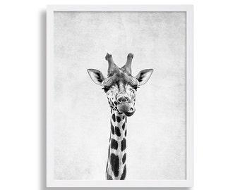Giraffe Art Print Modern Decor Animal Wall Art Grey Living Room Decor Nursery Art Safari Animal Print 8x10 11x14 A4 A3 16x20 Large Art Print