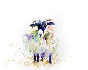 LIMITED edition print of   SHEEP 1455 wall art, home decor, nursery art, wildlife animal art.  hand signed, illustration, animal art