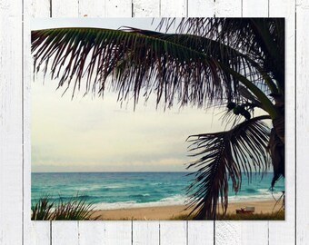 Peaceful Beach Photography Art Print | Turquoise Ocean Waves, Teal Sea, Palm Tree, Horizon | Beach House Decor | Beach Wall Art | Salty Palm