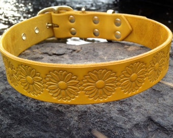 "Cool Custom Daisy Leather dog collar 1.25"" yellow with gold metallic embossing"