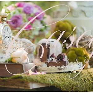 Enchanted fairy tale themed stock photos - 5 pack