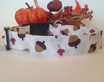 Fall Acorns Dog Collar - Adjustable