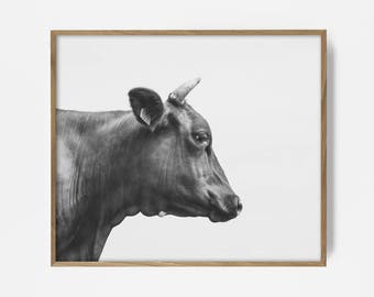 bw bull print, bw farm print, bw western print, bw western art, bw cow art, bw cow print, bw southwest art, country print, country art, art