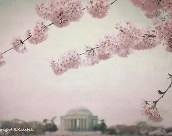 Cherry Blossoms Art Photography Washington DC Jefferson Memorial Vintage Style gray Pink Wall Art DC Cherry Blossoms 8x12