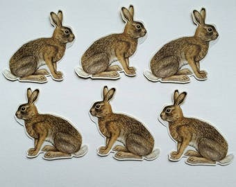 6 x Mountain Hare stickers. Snail mail hobonichi midori planner journal decorations. Ephemera.