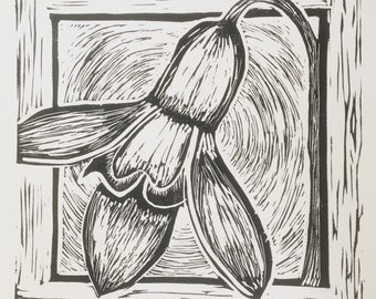 "Botanical1 handprinted linocut 12""x12"""