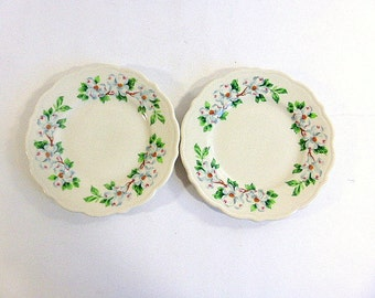 Vintage Syracuse China Dogwood Pattern Bread and Butter, Dessert Plates, Set of  2 Cottage Chic Dish Southern Dogwood Floral Dinnerware