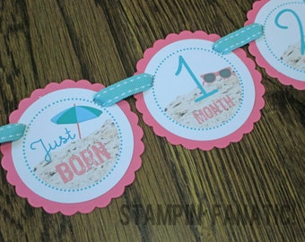 READY to SHIP Beach Bum Collection: Just Born/0-12month Beach First Birthday Photo Picture Banner. First Year Banner. Sand Sun Ball