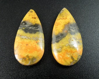 Beautiful cut bumble bee jasper pair, Earring set, Designer cabochon, natural stone S7550