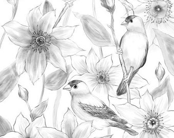 Birds and Flowers - Printable Adult Coloring Page from Favoreads (Coloring book pages for adults and kids Coloring sheets, Coloring designs)