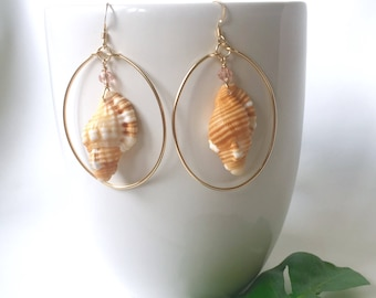 Shell Hoop Earrings, Triton Shell Hoop, Sterling Silver and 14k Gold Fill