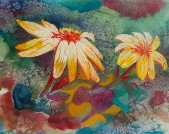 Underwater sea daisies