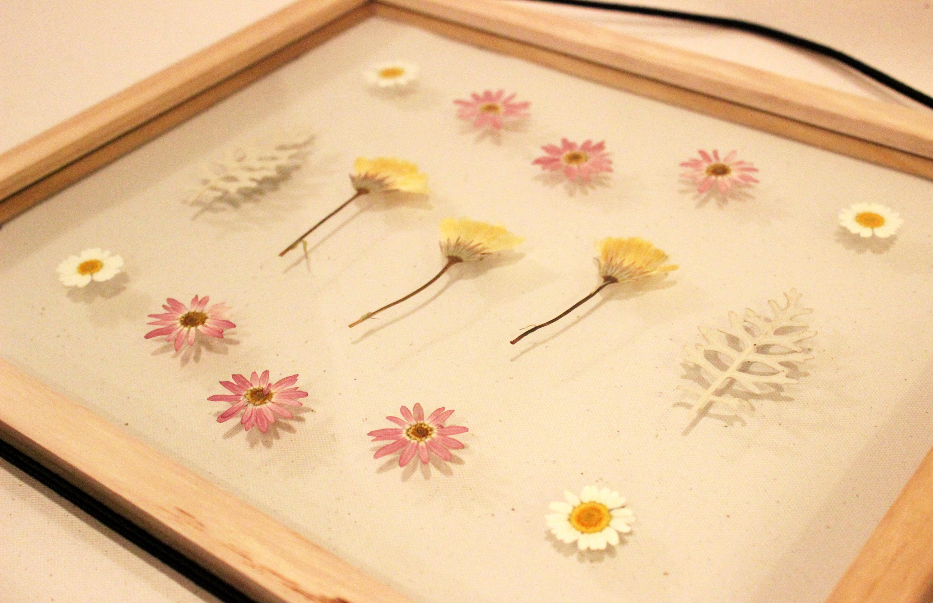 Cute Bungalow Rose Wall Decor Gallery - The Wall Art Decorations ...