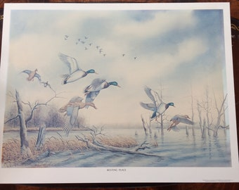 Allen Hughes Ducks RARE Signed and Numbered Lithograph Large Print  RESTING PLACE Vintage 1978