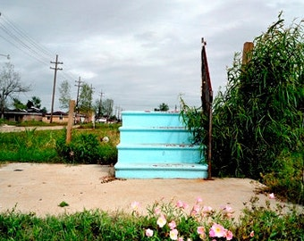 Lower 9th Ward, New Orleans, 2 years after Hurricane Katrina.  Blue Steps with Flowers, 2007.  An Original Art Card.