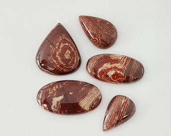 5 pcs Lot of SnakeSkin Jasper Cabochon