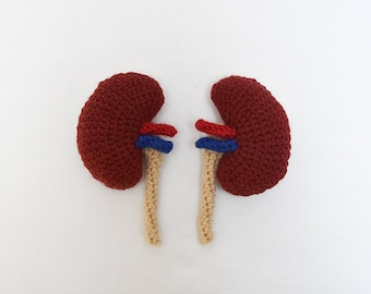 Kidneys Crochet Pattern - Amigurumi Organs Pattern - Amigurumi Kidneys Pattern - Toy Organs, no.185