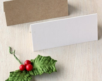 Blank Name Cards - Place Cards for Weddings, Parties & Events