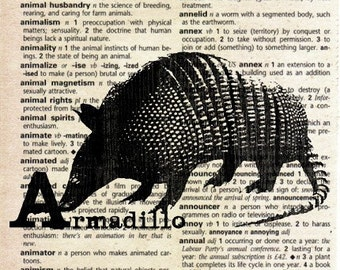 Animal Alphabet ABC Print on Vintage Dictionary Page - Armadillo