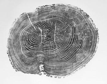 Oversized Tree Ring Art, Large ash tree print, Tree Ring Art Print, Original tree art, Christmas Tree art, Arborist art gift, Dendrology art