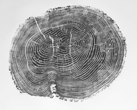 Oversized Tree Ring Art, Large ash tree print, Tree Ring Art Print, Original tree art, Father's Day Art, Arborist art gift, Dendrology art