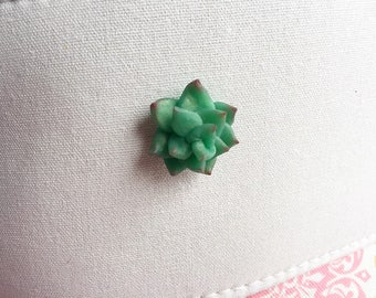 Succulent Brooch Succulent Jewelry Polymer Clay Succulent