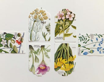 Botanical Gift tags, Hang tags, Scrapbook embellishments, card making supplies, Eco-friendly Gift wrapping, Labels
