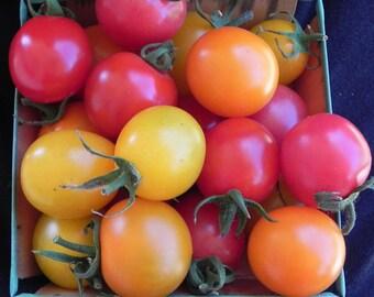 VTC) VERY CHERRY Cherry Tomato~Seeds!!!!!!~~~~~~Newer Variety!!!