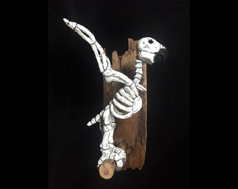 Polly, Parrot, Day of the Dead, Skeleton, Bird, Art