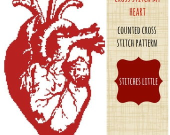 Anatomical Heart Cross Stitch Pattern - Modern Cross Stitch - PDF Pattern - Instant Download