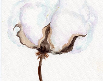 Cotton Boll watercolor painting Original,  Modern MInimialism home decor, white cotton boll, Mississippi artist, cotton watercolor 5 x 7