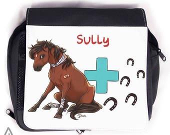 Horse care Kit