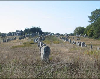 Poster, Many Sizes Available; Carnac Standing Stones