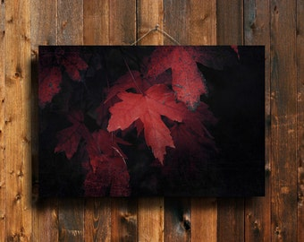 The Red Leaves - Red Leaves photography - Red Leaves art - Autumn photography - Autumn art - Autumn canvas - Red leaves canvas