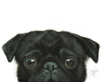 Pug, Pug Art, Black Pug Art, Black Peekaboo Pug Gift, Pug Lover